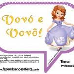 Plaquinhas Divertidas Princesa Sofia 40