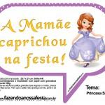 Plaquinhas Divertidas Princesa Sofia 42