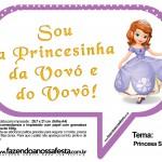 Plaquinhas Divertidas Princesa Sofia 44