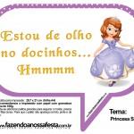 Plaquinhas Divertidas Princesa Sofia 46