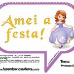 Plaquinhas Divertidas Princesa Sofia 48