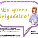 Plaquinhas Divertidas Princesa Sofia 49