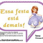 Plaquinhas Divertidas Princesa Sofia 50