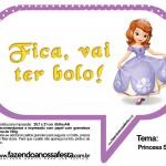 Plaquinhas Divertidas Princesa Sofia 58