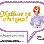 Plaquinhas Divertidas Princesa Sofia 59