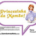 Plaquinhas Divertidas Princesa Sofia 61