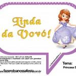 Plaquinhas Divertidas Princesa Sofia 62
