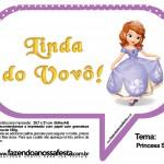 Plaquinhas Divertidas Princesa Sofia 63