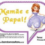 Plaquinhas Divertidas Princesa Sofia 65