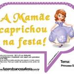 Plaquinhas Divertidas Princesa Sofia 66