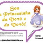 Plaquinhas Divertidas Princesa Sofia 68