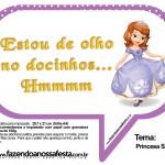 Plaquinhas Divertidas Princesa Sofia 70