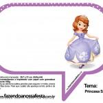 Plaquinhas Divertidas Princesa Sofia 78