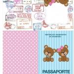 Passaporte Chá Revelação