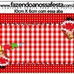 Saquinho de Balas Tradicional Kit Festa Junina Vermelho e Branco