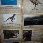Festa Dinossauros do João Lucas - Decoração