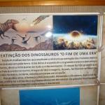 Festa Dinossauros do João Lucas - Decoração 3