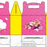 Caixa Lembrancinha Barbie Super Princesa Rosa