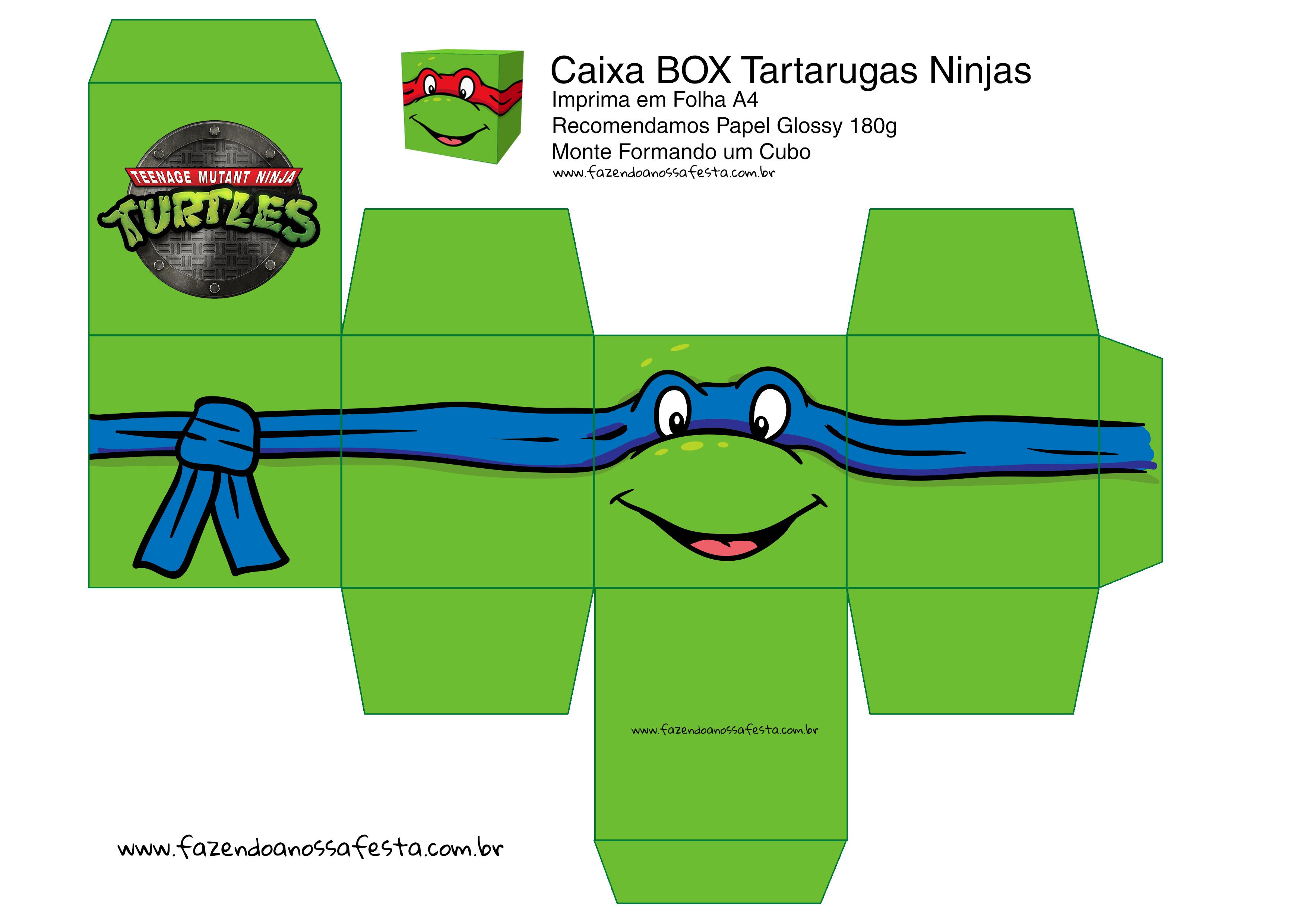 Leonardo Caixa Box Quadrada Tartaruga Ninjas Fazendo A Nossa Festa