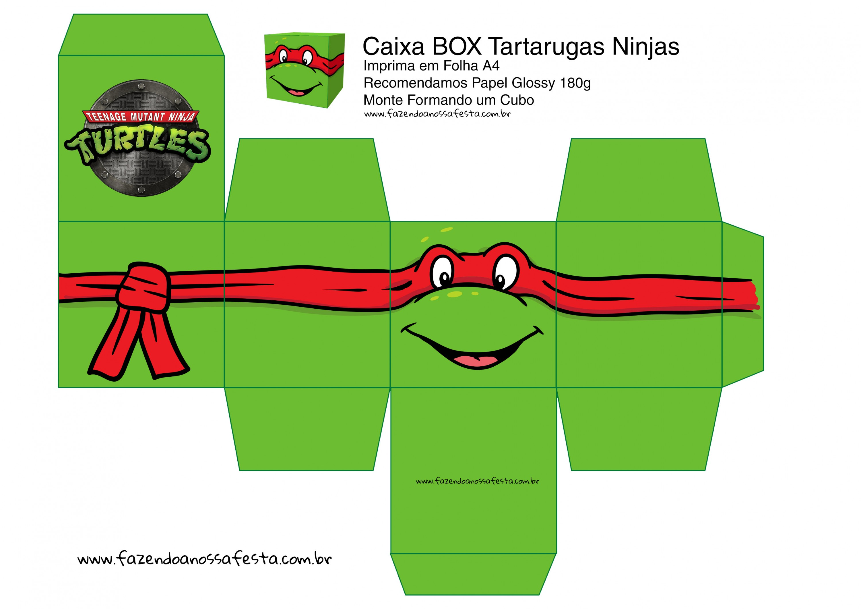 Raphael Caixa Quadrada Tartaruga Ninjas