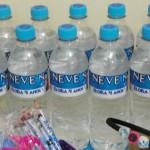 Água personalizada Festa Frozen da Eloísa