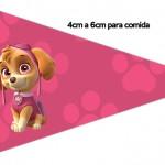 Bandeirinha Sanduiche 6 Patrulha Canina para Meninas
