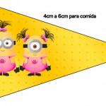 Bandeirinha Varalzinho Minions para Meninas 3