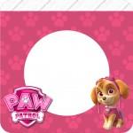 Bandeirinha Varalzinho Quadrada Patrulha Canina para Meninas