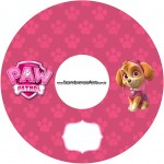 CD DVD Patrulha Canina para Meninas