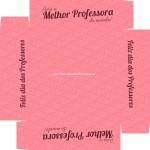Caixa de Bombom Dia dos Professores Melhor Professora Coruja Rosa - Fundo