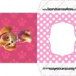Envelope CD DVD Patrulha Canina para Meninas