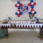 Festa Sonic do Henrique