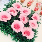 Flor Festa Jardim Encantado da Ana Laura