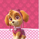 Mini Confeti Patrulha Canina para Meninas