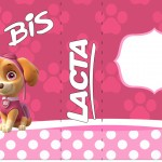 Rótulo Bis Duplo Patrulha Canina para Meninas