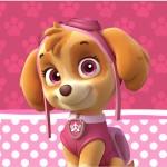 Rótulo Tubetes Patrulha Canina para Meninas