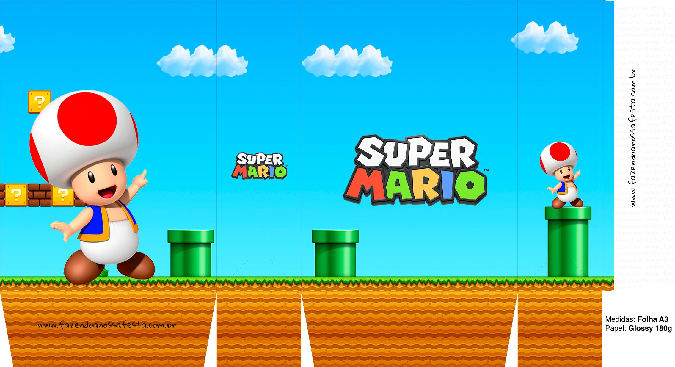 Sacolinha Surpresa Super Mario Toad A3