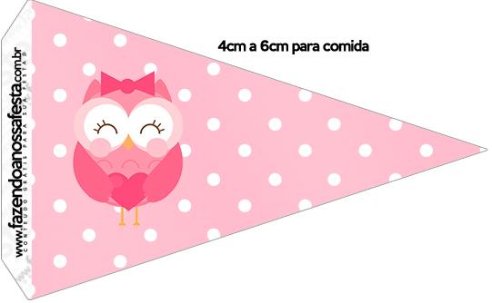 Bandeirinha Varalzinho 2 Dia dos Professores Corujinha Rosa