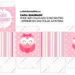 Caixa Bis Dia dos Professores Corujinha Rosa