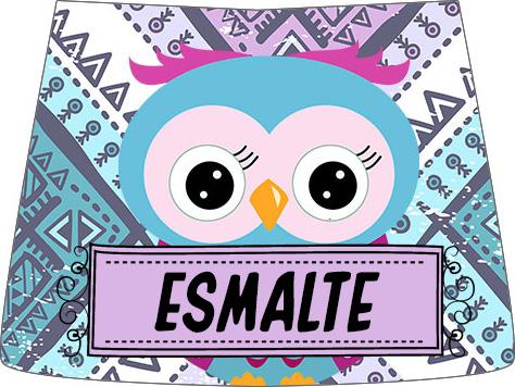Rótulo Esmalte Risque 2 Dia Dos Professores Coruja Roxa e Azul