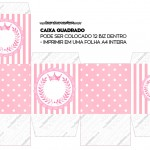 Caixa Bis Kit Realeza Rosa