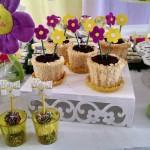 Toppers Festa Jardim das Borboletas da Alícia