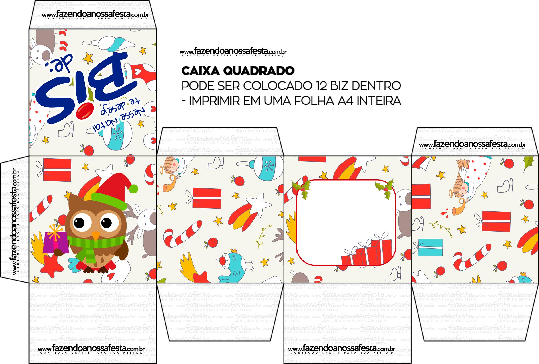 Caixa Bis Presente de Natal Corujinhas Quadrada