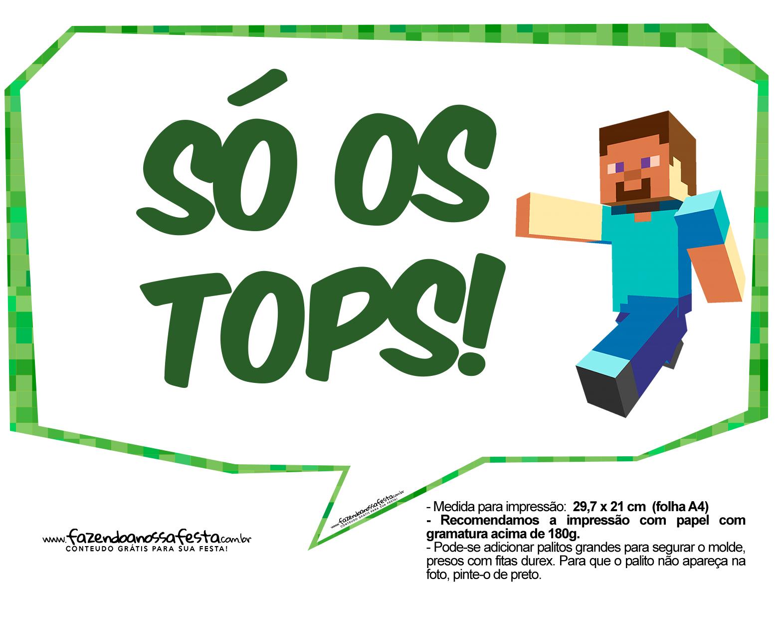 Letras Minegraft Fazendo A Nossa Festa: Plaquinhas Minecraft 23