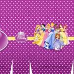 Sacolinha Princesas Disney Roxa A3