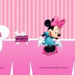 Sacolinha Surpresa Minnie Rosa - A3