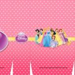 Sacolinha Lembrancinha Princesas da Disney A3