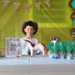 Festa Cowboy do Vitor 2