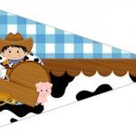 Bandeirinha Sanduiche 6 Kit Fazendinha Menino