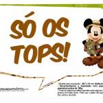 Plaquinhas Mickey Safari 17
